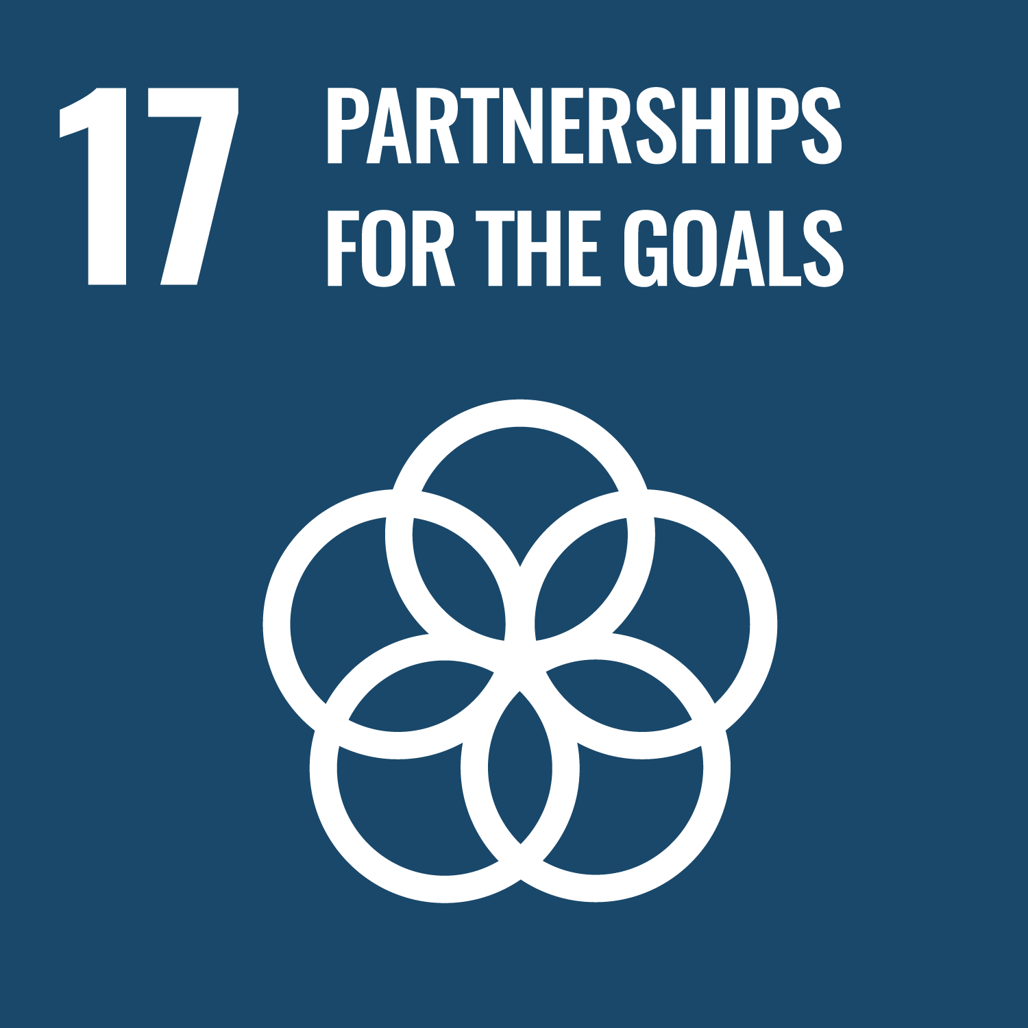 17 - Partnerships to achieve the Goal